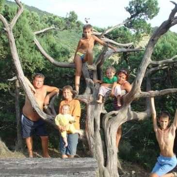 Конкурс «Семейное древо»: подведены итоги.